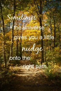 Sometimes, even if you think you have a handle on exactly what you want, the universe comes along and gives you a little nudge onto the right path. ~ www.picklesINK.com