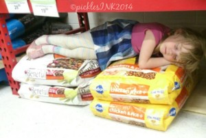Photo of Molly sleeping in on top of bags of dog food in a store.